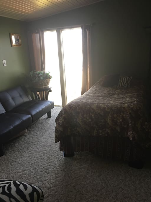 Bedroom on first floor has a twin size bed and sofa that folds down to a twin size bed