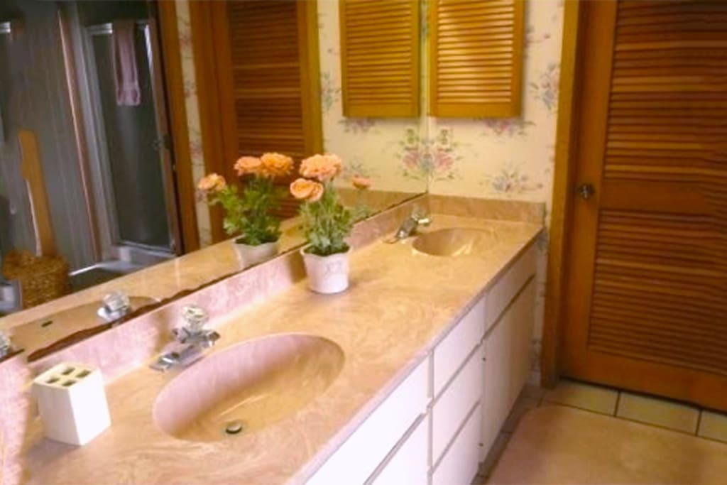 Ensuite bath, two sinks, separate shower, jetted tub.