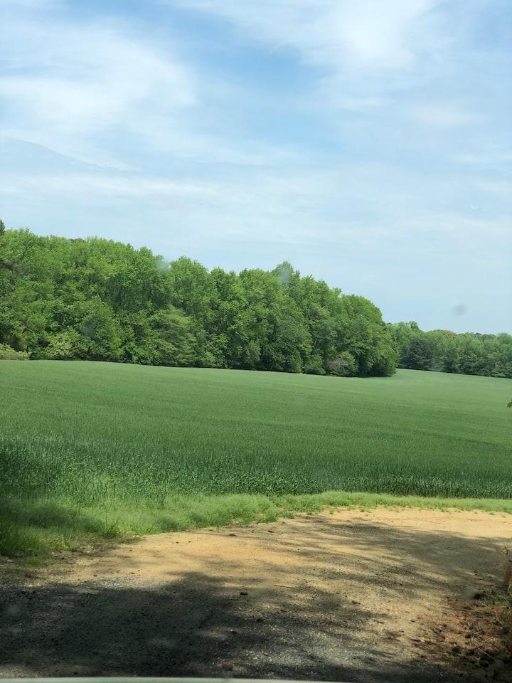 D and D Farm