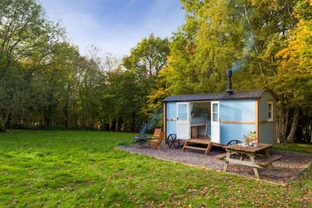 Wild woodland retreat shepherds hut - Elham - Другое