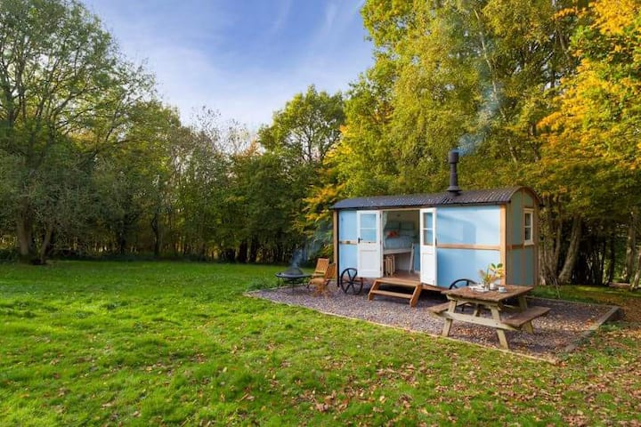 Wild woodland retreat shepherds hut