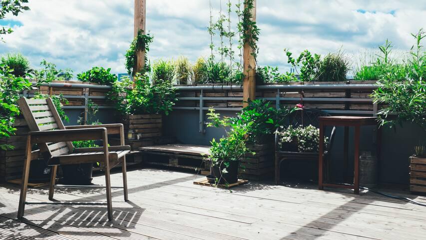 Greensea Penthouse - słoneczny taras - garaż