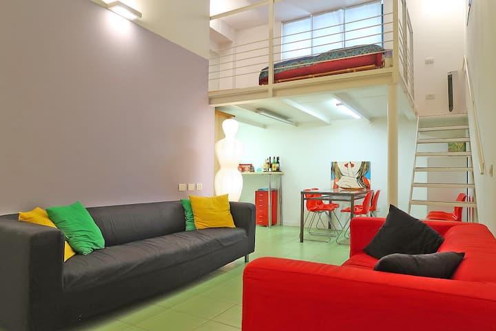 Comfortable 50 m² / 540 ft² loft apartment