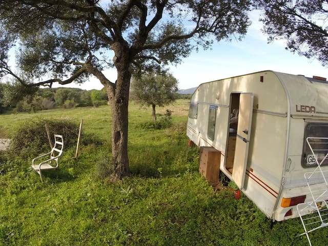 Spacious caravan in the nature - Facinas