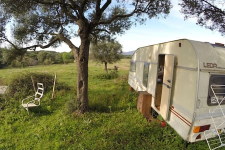 Spacious caravan in the nature - Facinas - Camper/RV