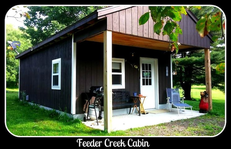 Feeder Creek Cabin - Pulaski - Bed & Breakfast
