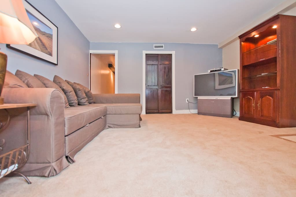 Living Room with coat closet, Big Screen TV, and bookshelf with neighborhood info. The couch has been updated FYI