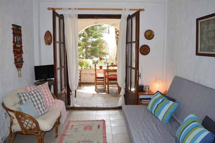 Summer home, just 1' to the beach, terrace, WiFi - Fourka - Apartament