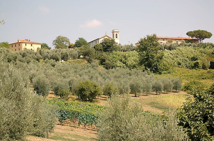 Holidays in Tuscany tra Pisa, Lucca e Firenze
