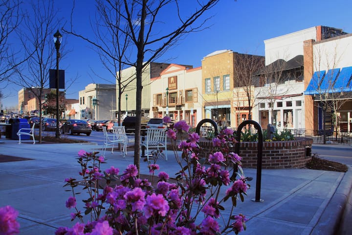 Historic Downtown Hendersonville.