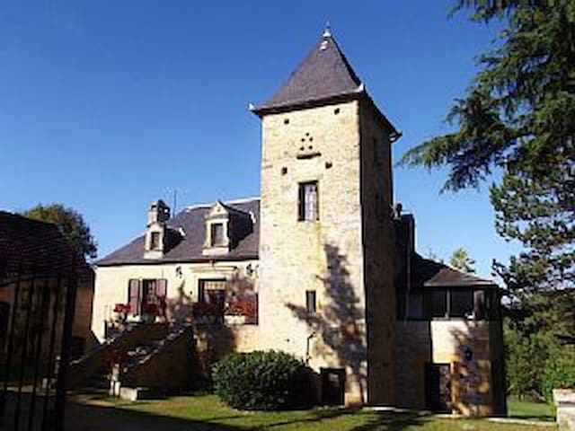 Sarlat 20 mn 2.5 acres with ht.pool - Cénac-et-Saint-Julien - Huis