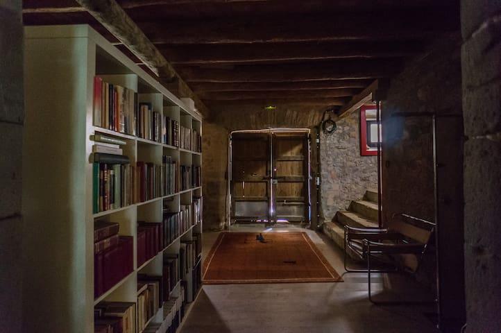 Entrada y biblioteca
