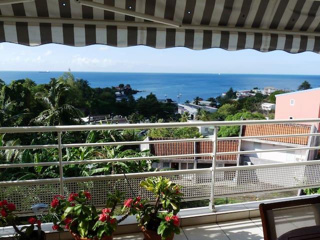 Bel appartement spacieux, vue mer, 5 plages