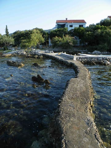 Breezy place on Dalmatian seafront - Pelješac - Daire