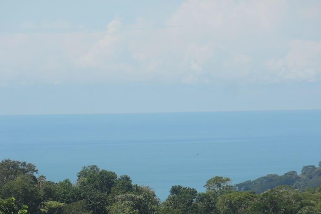 Belle vue sur l'ocean pacifique .