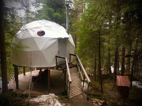 Rustico Alaskan Domestead *Recentemente aggiornato!*