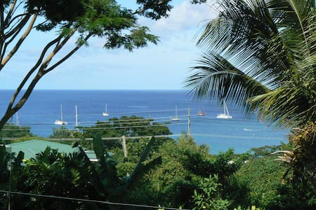 Caribbean Cottage Club Garden Apt. - Apartamento