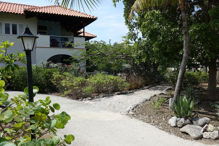 Wonderful tropical apartment by the beach of Windsock, in Belnem, on the island of Bonaire