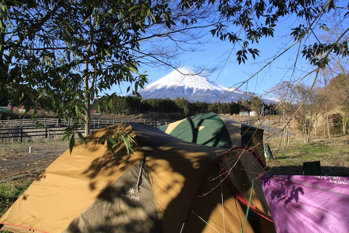 Chill out camp in Mt Fuji resort - Fuji-shi - Zelt