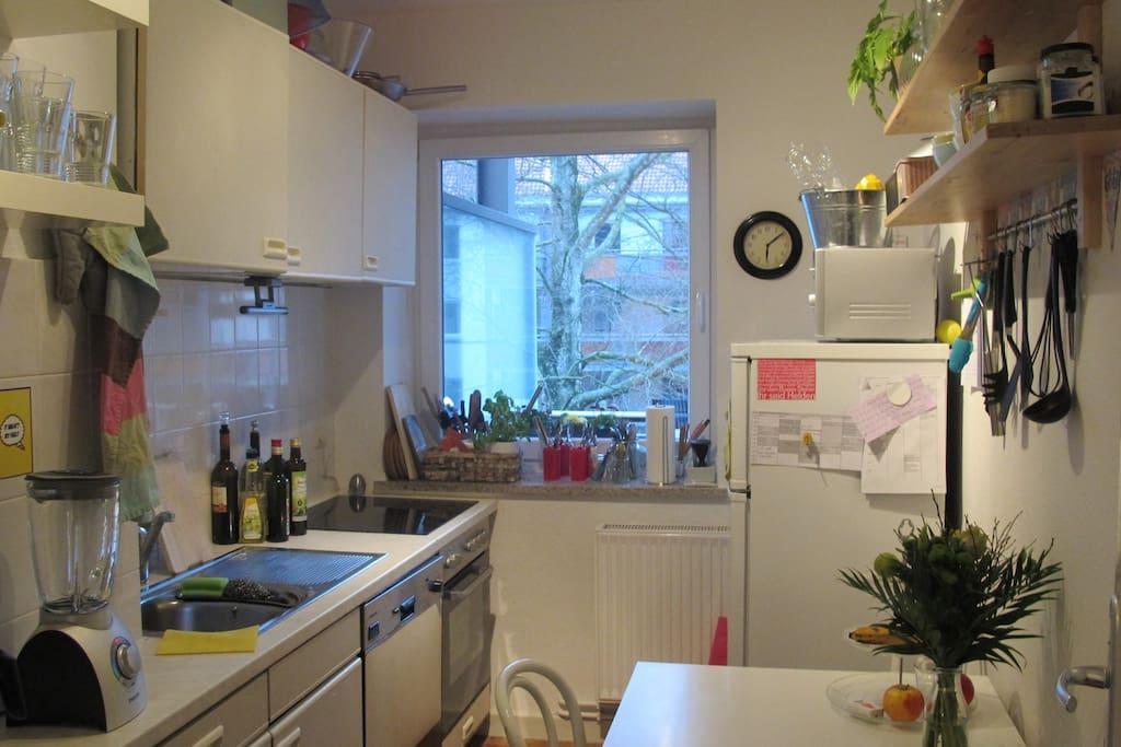 Die Küche bietet Kühlschrank, Backofen und Ceranfeld, und eine Spülmaschine.