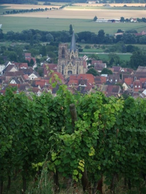 View of Rouffach