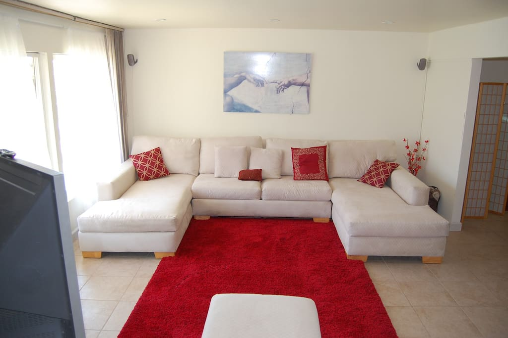Contemporary sectional sofa with plush rug