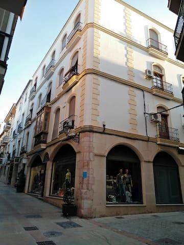 apartamento en el centro de Andalucia - Antequera