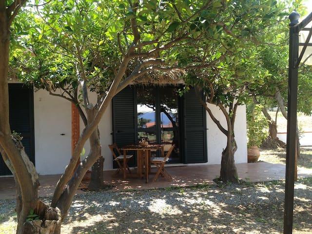 Cottage1  nel verde a 400m dal mare - Parghelia - Huis