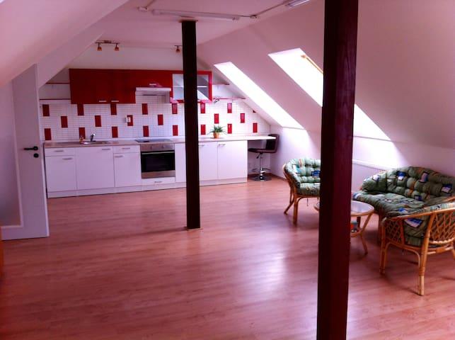 Spacious loft at calm suburb - Prag