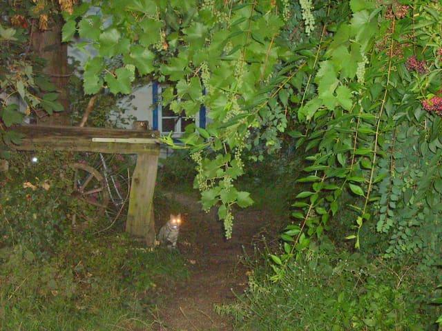 alte Hütte, wilder Garten - Therwil - Huis
