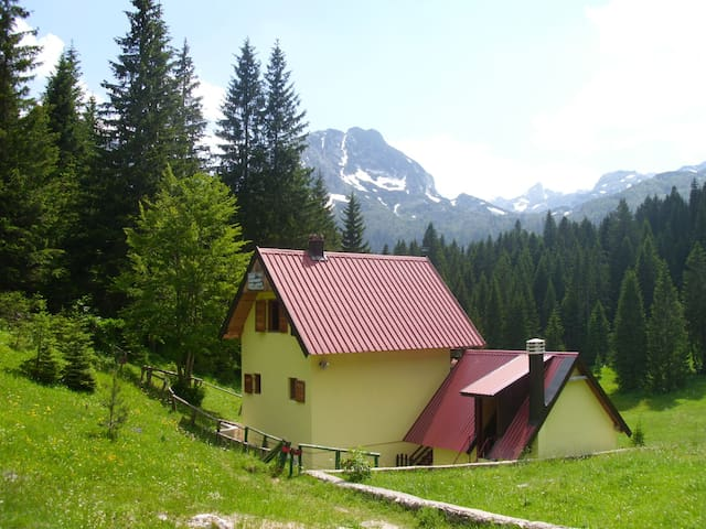Charming mountain view apartment - Pitomine - Appartement