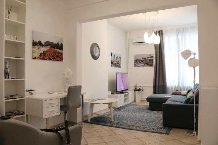 Bright & cozy large flat in best location/Vitoshka