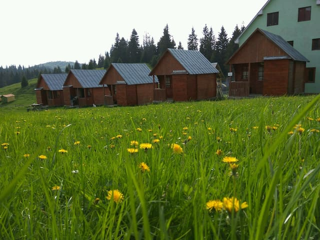Guesthouse and wood chalets in wonderful area