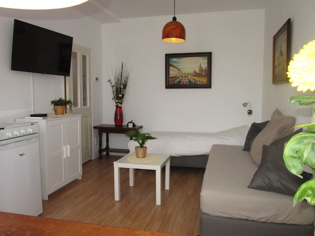 Studio in farmershouse - Maastricht - Apartament