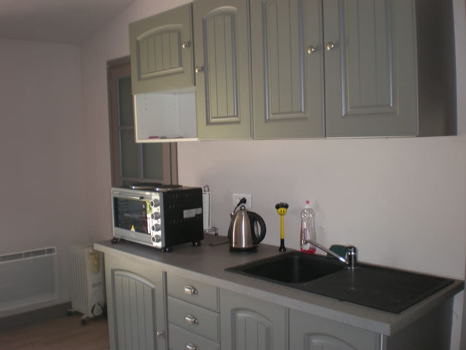 Kitchenette with fridge, mini oven and two ring hob, kettle and coffee machine.