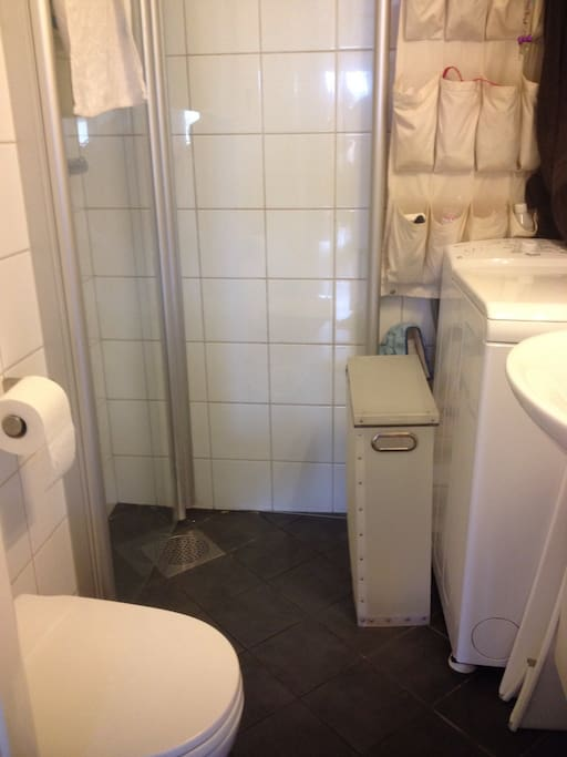 Tiny, but practicale bathroom with a Washing machin.