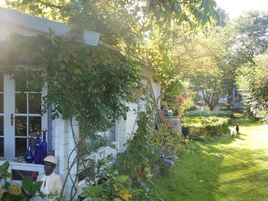 Een kijkje in onze tuin.
