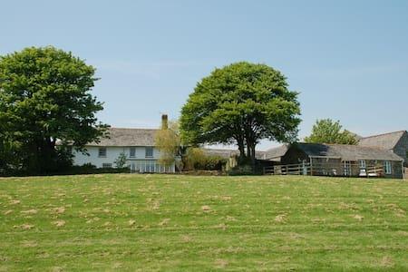 Romantic Cornish Stone Barn for 2 - Pelynt - House