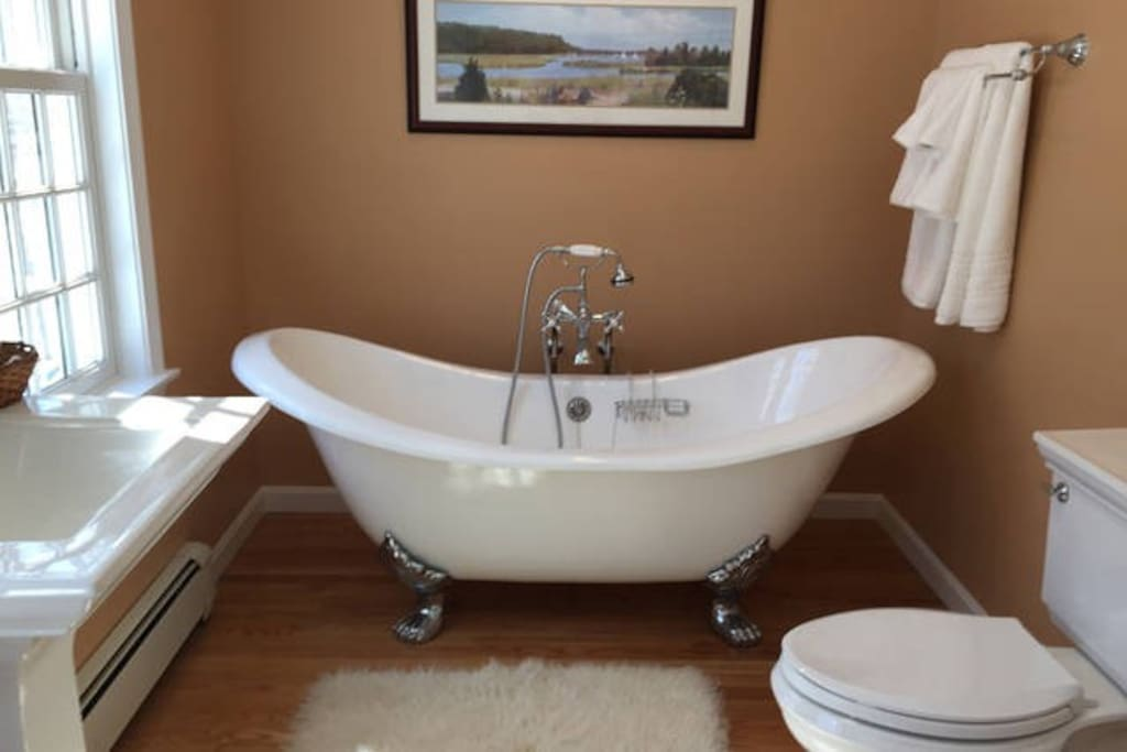 Double slipper tub with old fashioned telephone faucet and spray