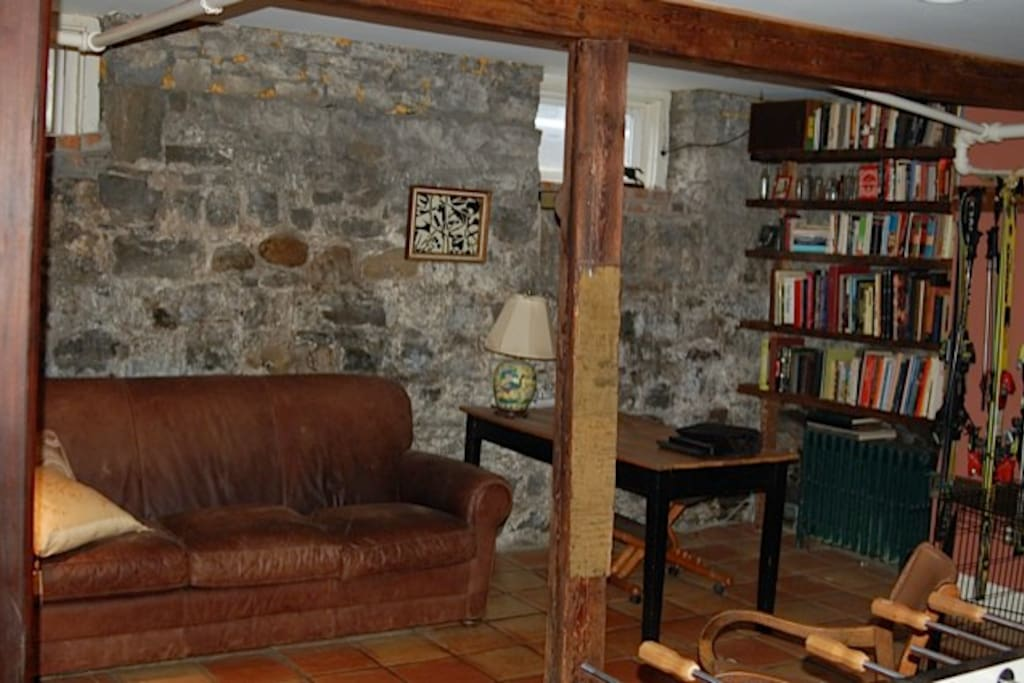 Basement library and den