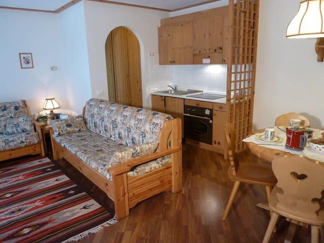Appartamento Alba di Canazei - Alba-penia - Huoneisto