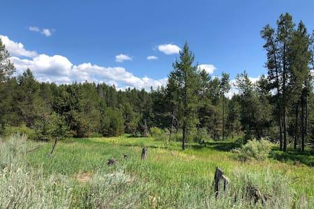 A short walk to Lake Cascade