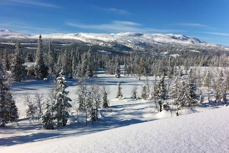 Koselig hytte i flott ski- og turterreng - Synnfjell