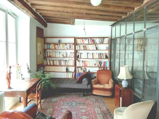 Paris cosy appartement quartier latin saintMichel