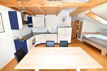 Terra Berni 2-Zimmer Dachwohnung 4P - Lägenhet