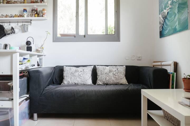 Living room - nice big windows, lots of light
