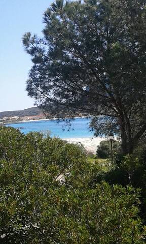 STREPITOSA OFFERTA MARE!!! - Golfo Aranci - Willa