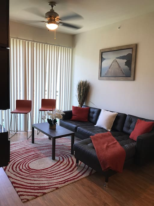 Modern 1 Bedroom Apt Near Downtown Apartments For Rent