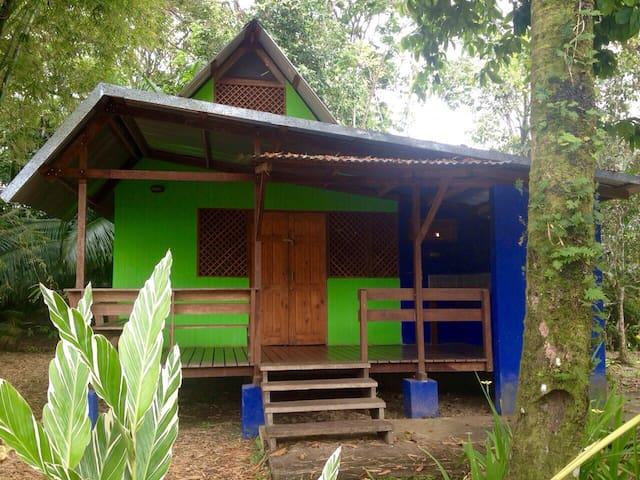 Bamboo House - Manzanillo - Hus