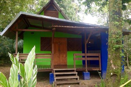 Bamboo House - Manzanillo - บ้าน